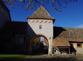 nambsheim-16-rue-du-chateau-22