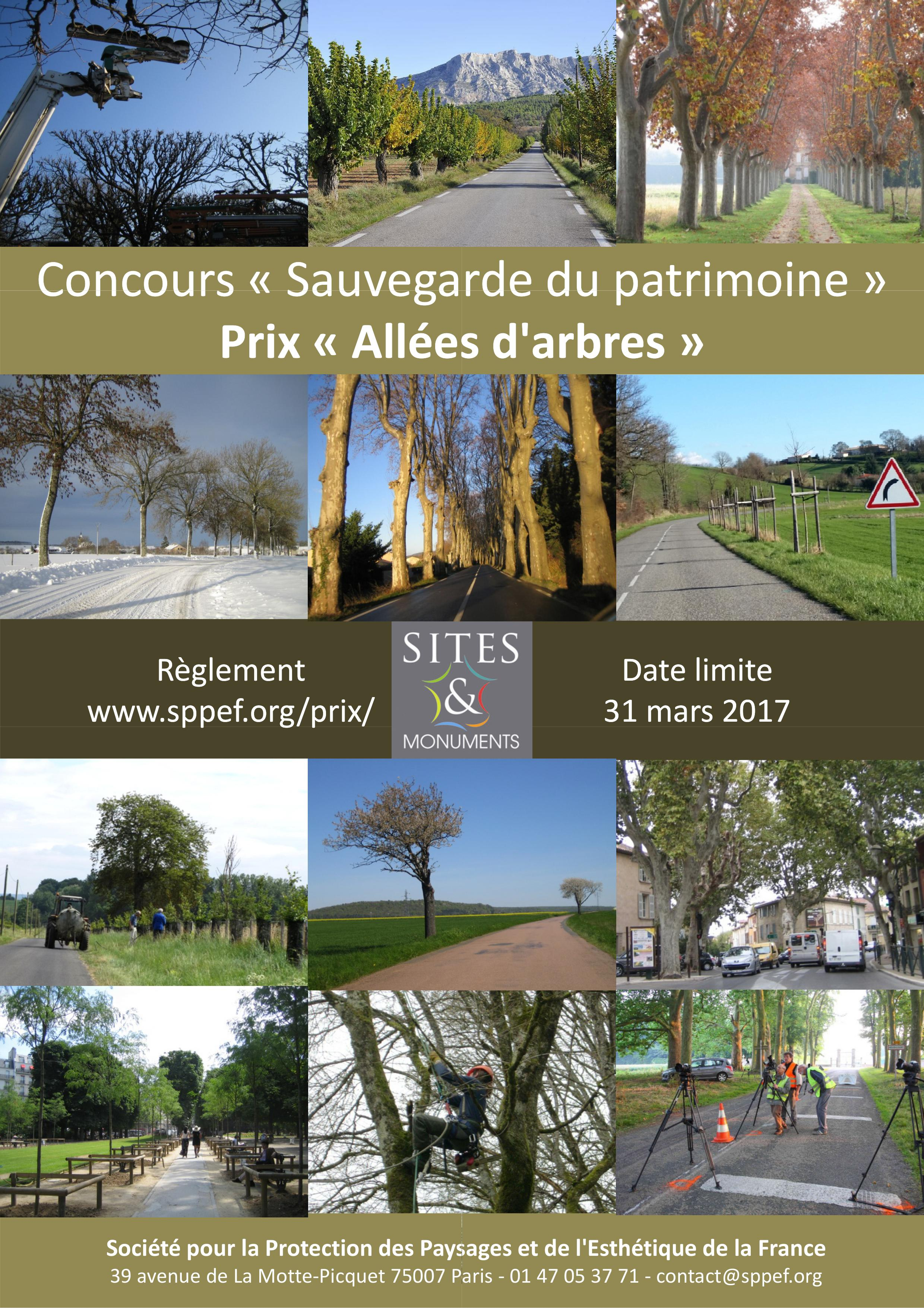 sppef_affiche-concours-allees-darbres-2017