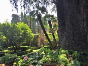 13 - Les jardins du prieuré